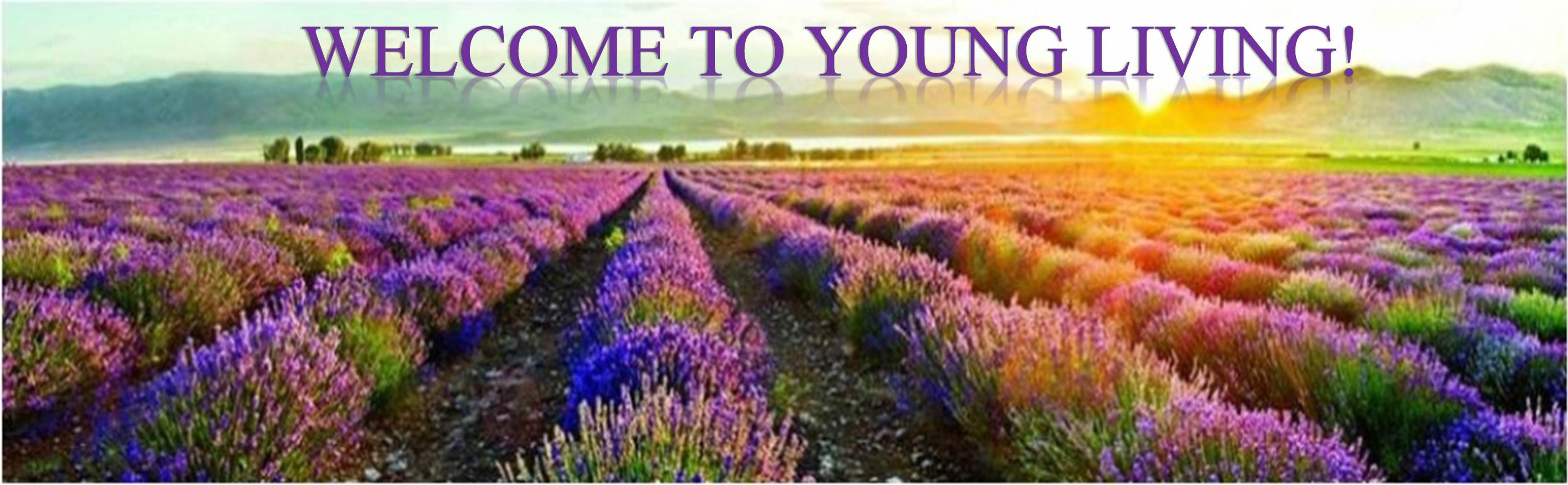 Art Line Young Living : Young living in search of glitter